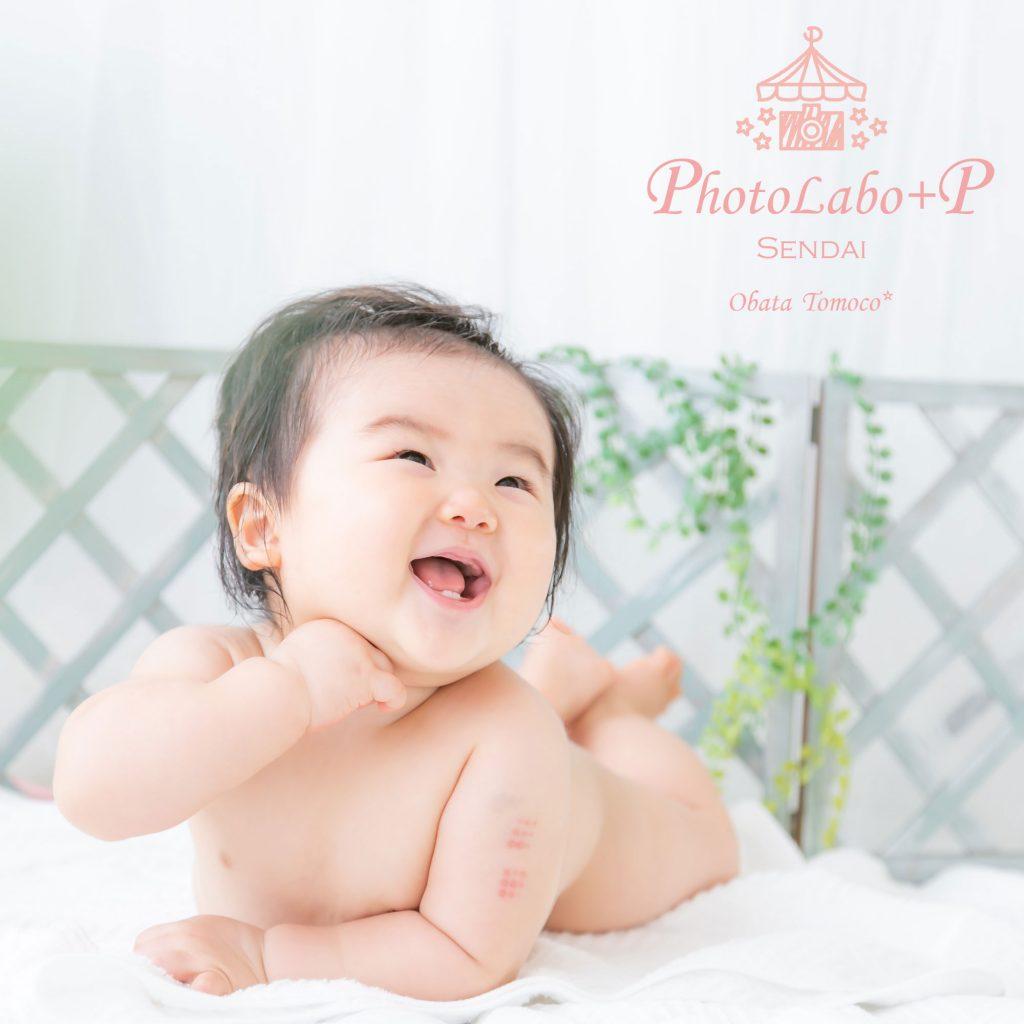 宮城県仙台市・秋田県大館市の赤ちゃんの撮影会カメラマン小畑トモコ